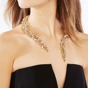 Gorgeous Bcbg Max Azria Jewelled Chocker Necklace